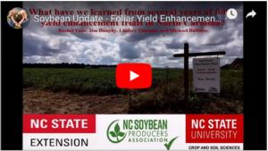 Soybean Update Video